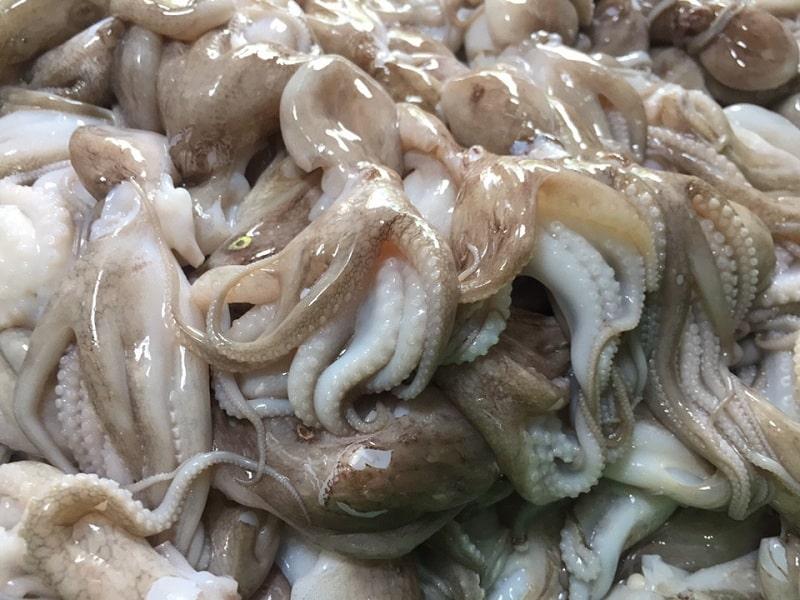 bạch tuộc nướng muối ớt
